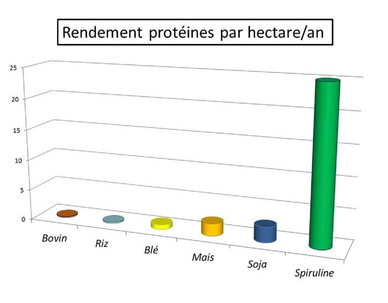 rendement proteine hectare 3