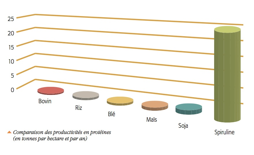 Comparaison des productivités en protéines (en tonnes par hectare et par an).