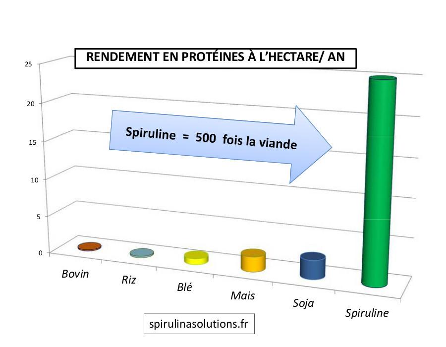 spiruline_proteines