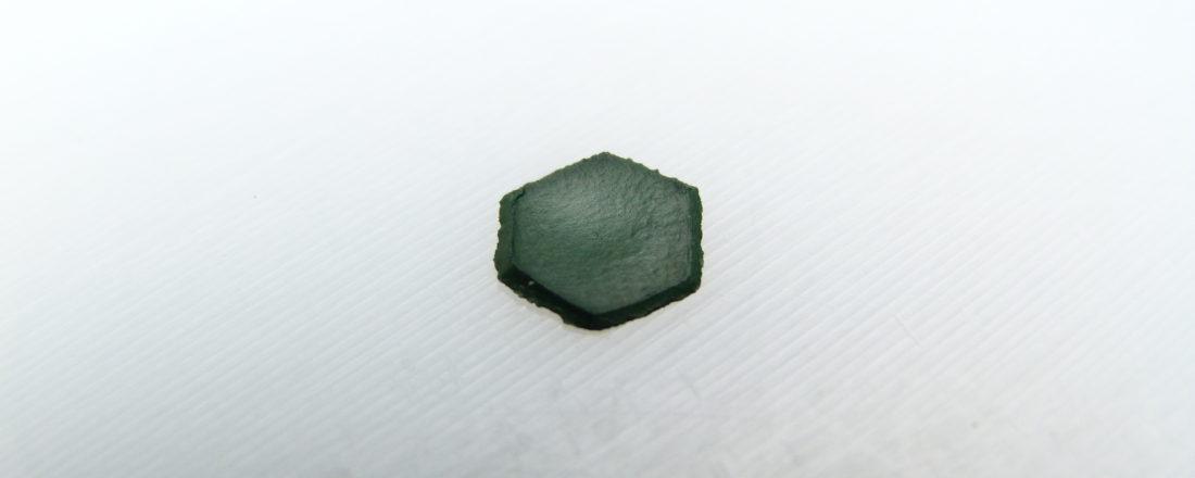 P1030941